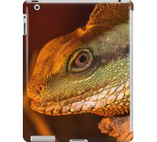Water Dragon 2 iPad Case/Skin