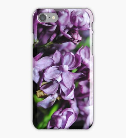 Macro Lilacs iPhone Case/Skin