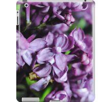 Macro Lilacs iPad Case/Skin