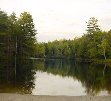 Tannery Pond Wilmot by batjuby