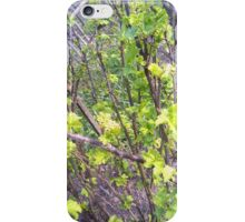 Currants. Part 2 iPhone Case/Skin