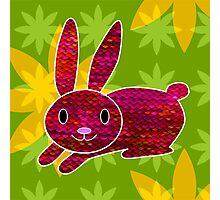 Knitty bunny Photographic Print