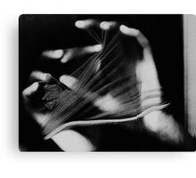 0092 Canvas Print