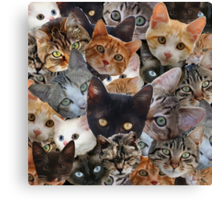 Kitty Collage Canvas Print