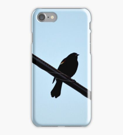 Agelaius Phoeniceus - Red-Winged Blackbird | East Moriches, New York  iPhone Case/Skin