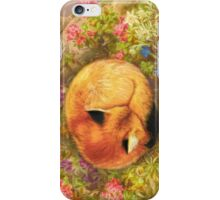 The Cozy Fox iPhone Case/Skin
