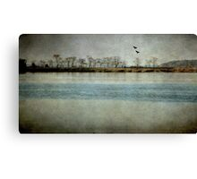 The River Of Time Canvas Print
