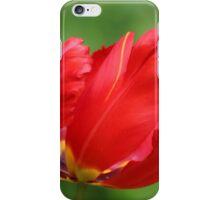 Red Parrot Tulip iPhone Case/Skin