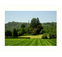 Green Valley City of Mission BC Art Print