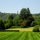 Green Valley City of Mission BC by MaluC