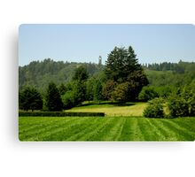 Green Valley City of Mission BC Canvas Print