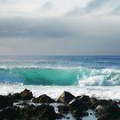 Surfs up. by Hannah Fenton-Williams