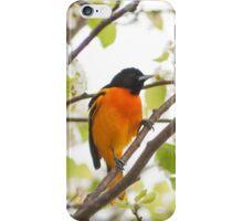 Baltimore Oriole iPhone Case/Skin