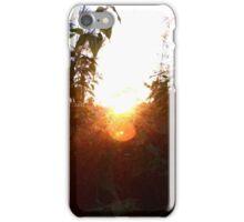 Gleaming Light iPhone Case/Skin