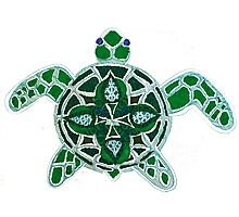 Turtle Back Photographic Print