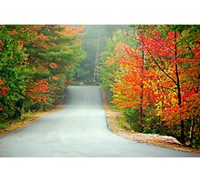Road to Zephyr Lake Photographic Print