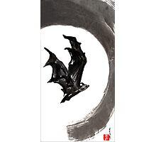 Bat Photographic Print