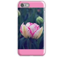 That Touch of Pink iPhone Case/Skin