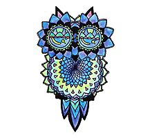 Zen Owl Photographic Print