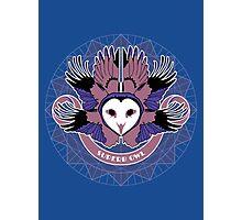 Superb Owl Photographic Print