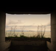 From a Window by philosophoto