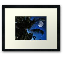 Moon Over Palm Trees Framed Print