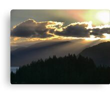 Rays Over The Pines Canvas Print
