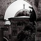 Al-Aqsa Mosque II.  by ayham Salameh