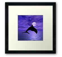 Dolphin Jump 1 Framed Print