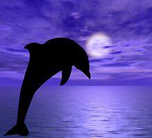 Dolphin Jump 2  by Okeesworld