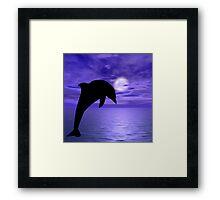 Dolphin Jump 2  Framed Print