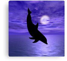 Dolphin Jump 4  Canvas Print