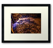 Echuca at night 3 Framed Print