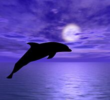 Dolphin Jump 5 by Okeesworld