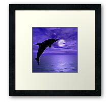Dolphin Jump 6 Framed Print