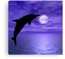 Dolphin Jump 6 Canvas Print