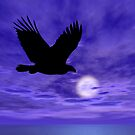 Eagle Flight by Okeesworld