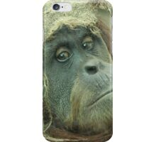 What are you looking at ? iPhone Case/Skin