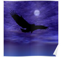 Eagle Gliding Poster