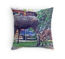 Public Viewing Throw Pillow
