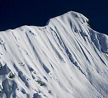The Climb to the Summit by Richard Heath