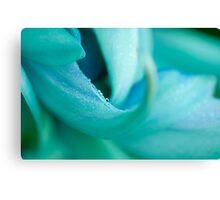 Jade Vine Flower Canvas Print