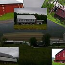 BARNS BARNS and more barns.... by Larry Llewellyn