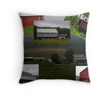 BARNS BARNS and more barns.... Throw Pillow