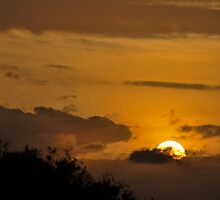 Kenyan Sunset by hybaby