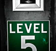 Level 5 by Wendy Mogul