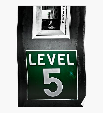 Level 5 Poster