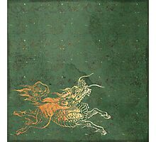 Caravans II:  Asian Print Happy Beast jade green and gold Photographic Print