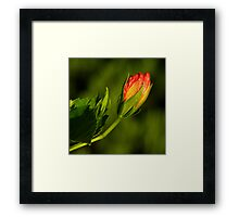 Spring Is Mother Nature's Colorist ~ Part Three Framed Print