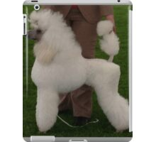 Cool Poodle Toy iPad Case/Skin